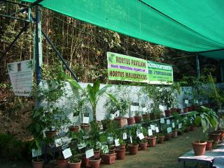 The Ayurveda College Pavillion